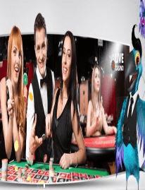 kiwinodeposit.com Karamba Casino
